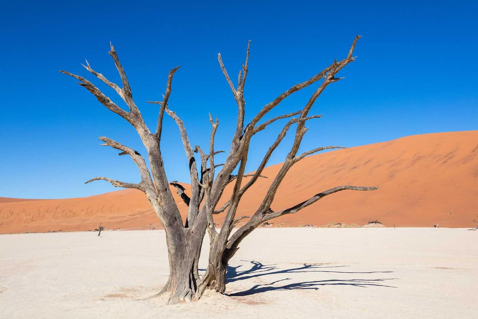 El desierto anaranjado de Namib, en Sossusvlei